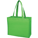 laminated shopping bag