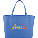 large reusable bag